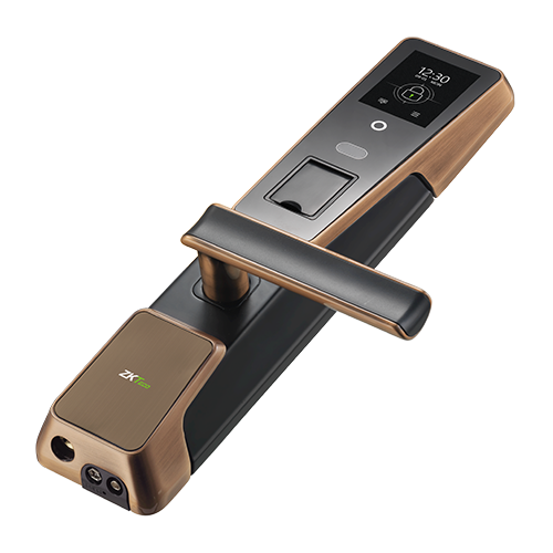 ZM100 Smart Lock with Hybrid Biometric recogntion technology
